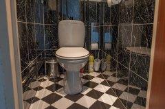 toilet_gang.jpg